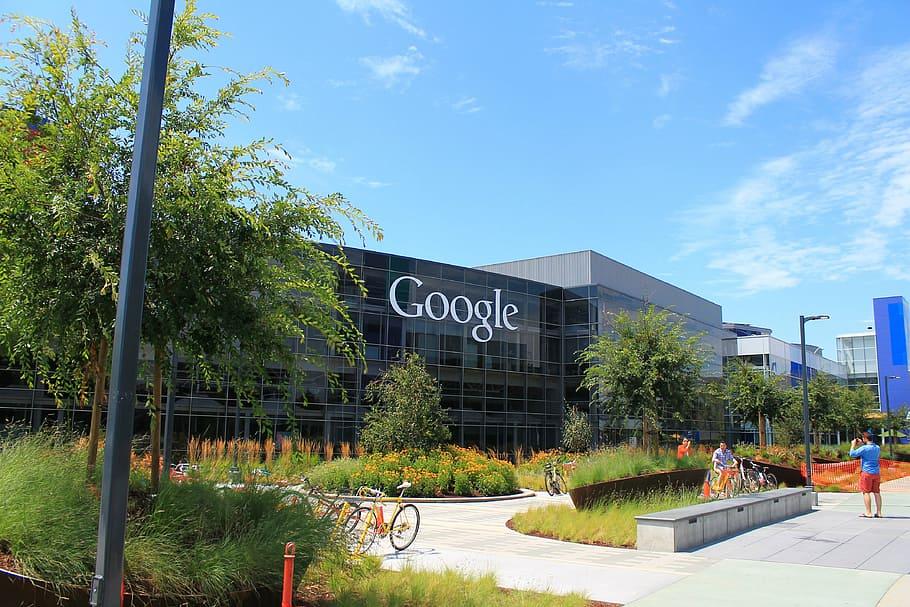 Marketing Digital: Así mide Google Ads las conversiones